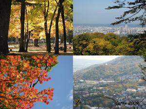 Red_leafs_maruyama_2